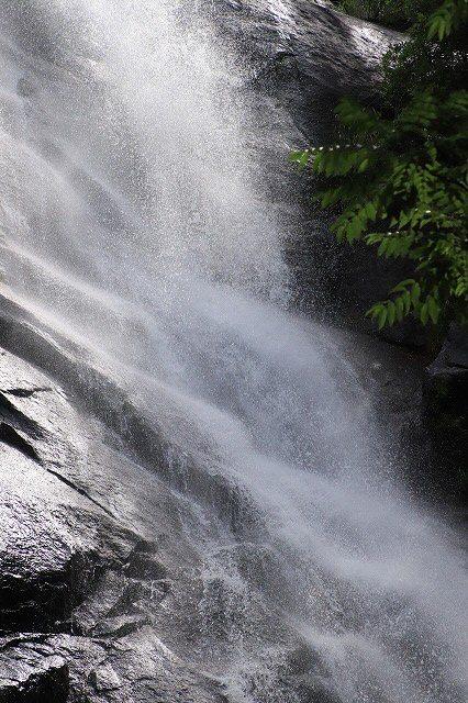 雨上がりの清滝(撮影:6月20日)_e0321325_13181766.jpg
