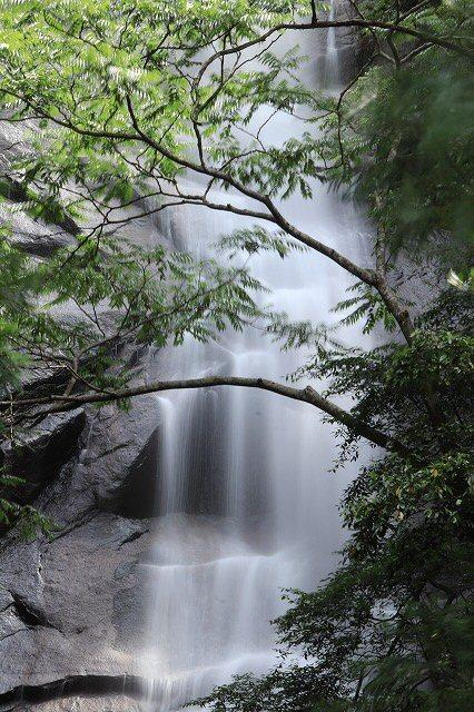 雨上がりの清滝(撮影:6月20日)_e0321325_13182971.jpg