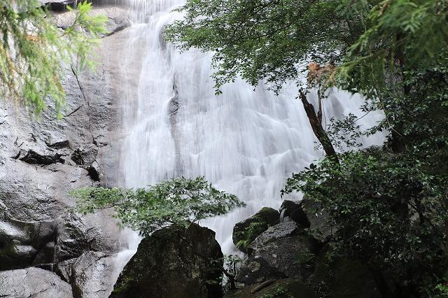 雨上がりの清滝(撮影:6月20日)_e0321325_13184294.jpg