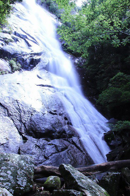 雨上がりの清滝(撮影:6月20日)_e0321325_13185587.jpg