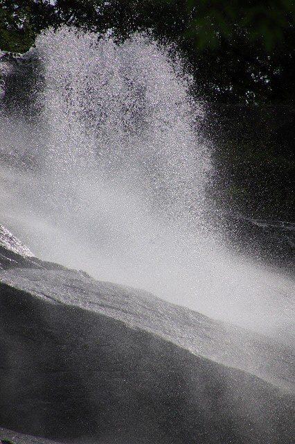雨上がりの清滝(撮影:6月20日)_e0321325_13193712.jpg