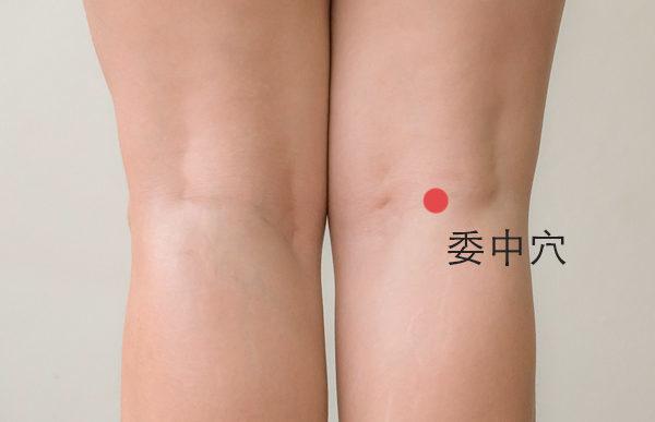 膝窩と腰痛の関連について_c0035230_23020281.jpg