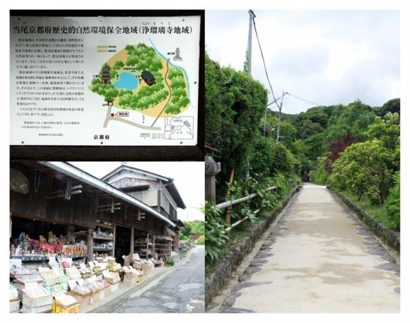 京都南山城の国_a0355356_10163774.jpg