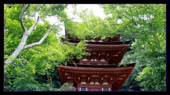 京都南山城の国_a0355356_10164924.jpg