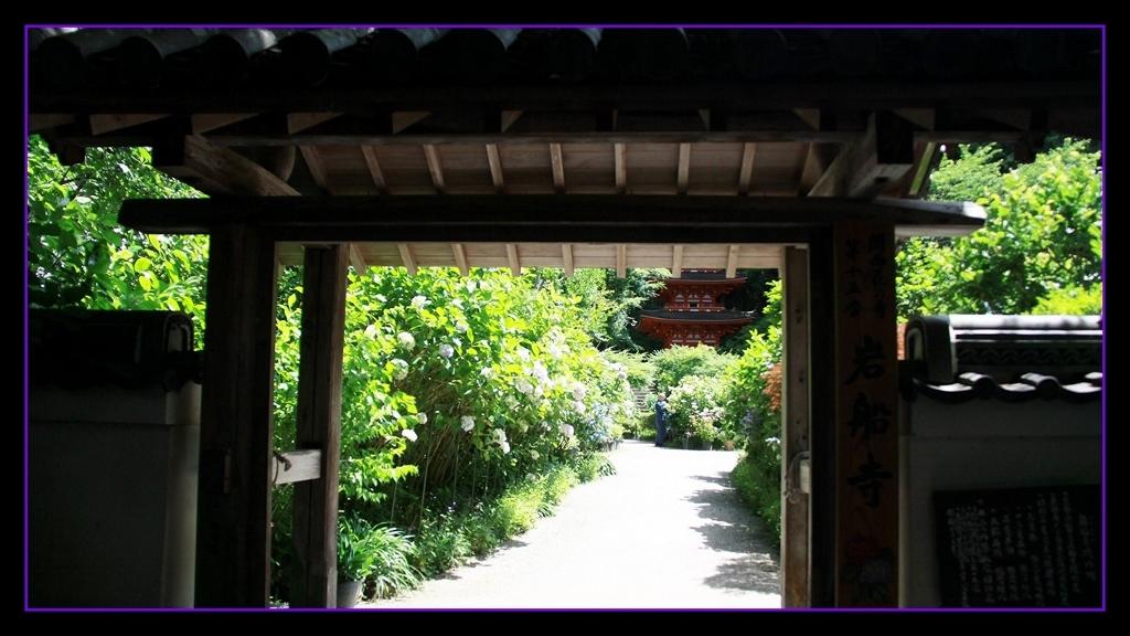 京都南山城の国_a0355356_10183323.jpg