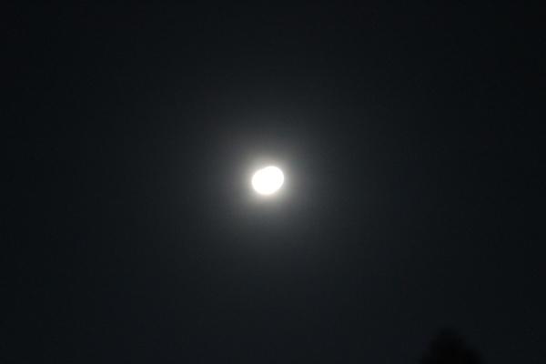 ハートの太陽。。♡_a0174458_00015350.jpg