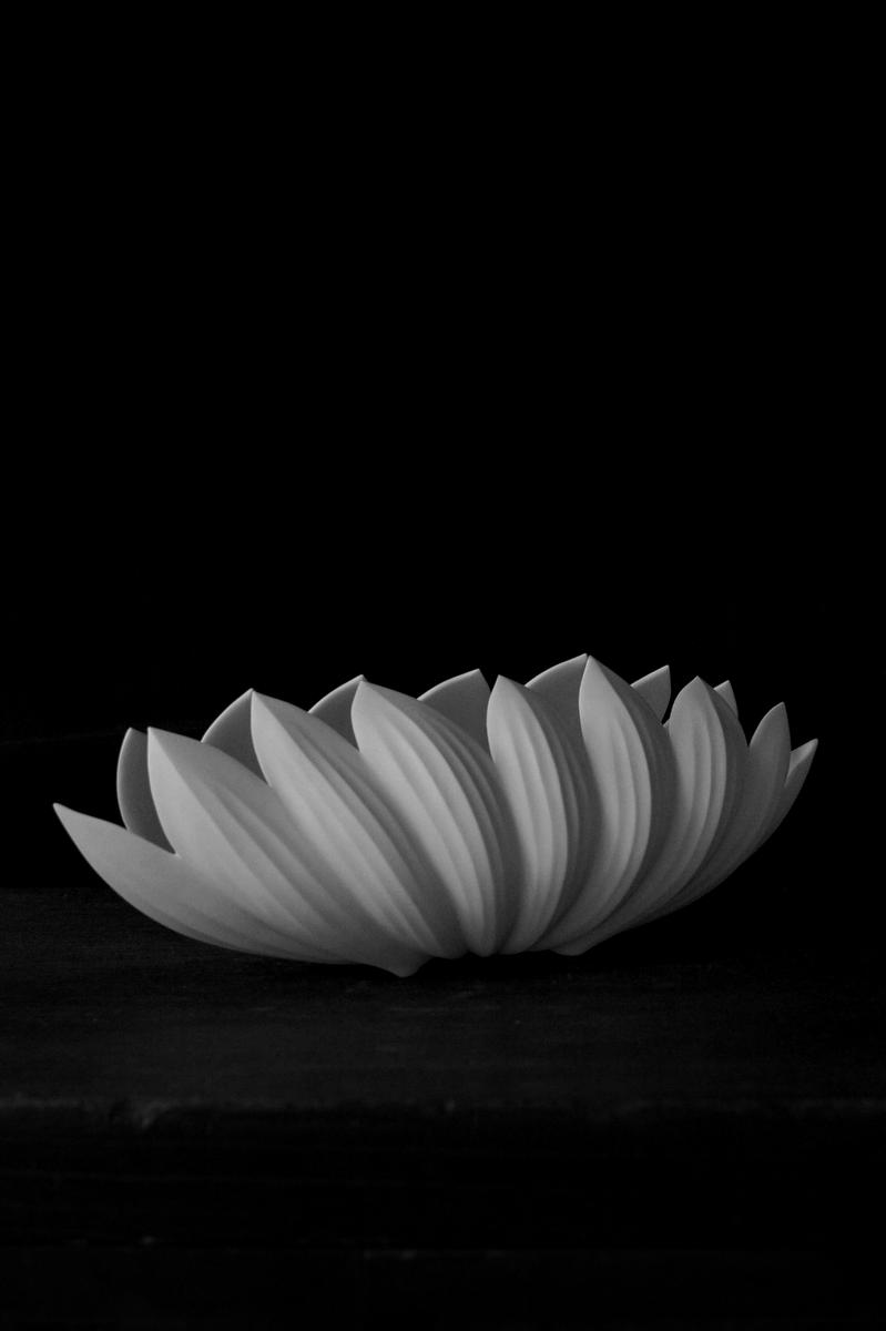 「若杉聖子展 PORCELIAN LOTUS」ご案内_d0087761_10201854.jpg