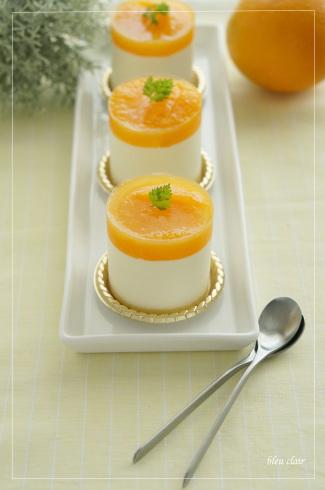 オレンジのムース_b0270372_20561622.jpg