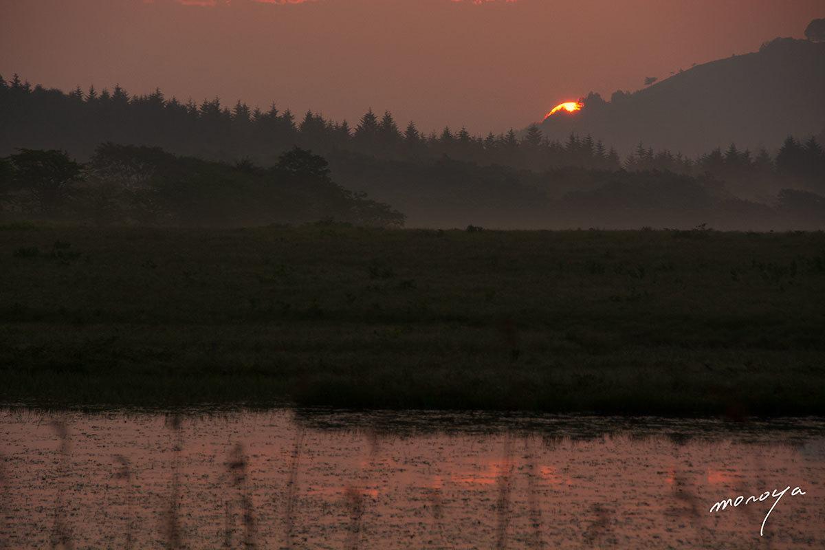 湿原の夜明け_c0085877_06101791.jpg