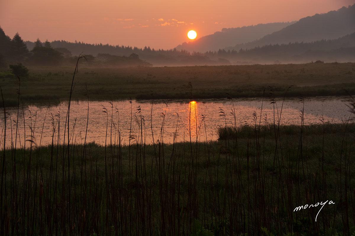 湿原の夜明け_c0085877_06102461.jpg
