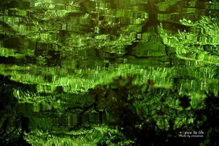 水面緑_f0326278_20301793.jpg