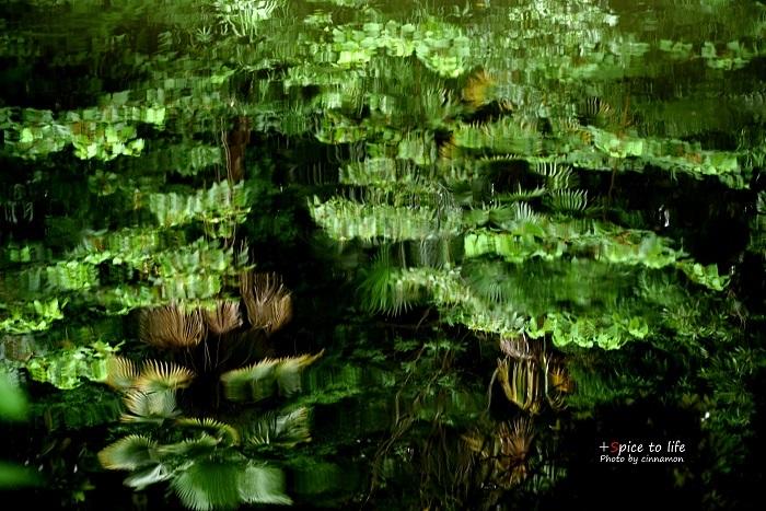 水面緑_f0326278_20302349.jpg