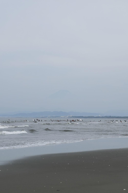 朝の鵠沼海岸♪_b0275998_13492952.jpg
