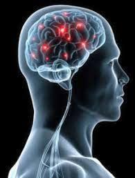 2016年記事再掲: 身体にも影響する「脳震盪」の怖さ_b0112009_13082078.jpg