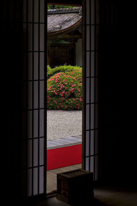 正伝寺のサツキ_f0155048_0172134.jpg