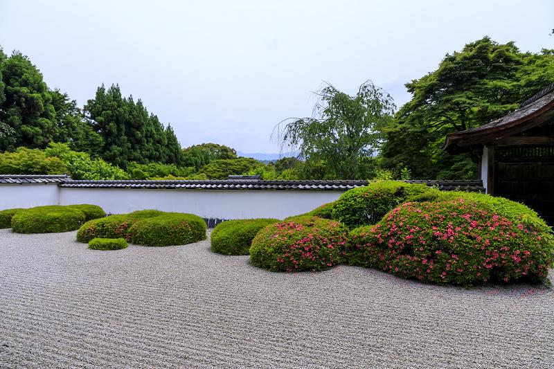 正伝寺のサツキ_f0155048_0173993.jpg