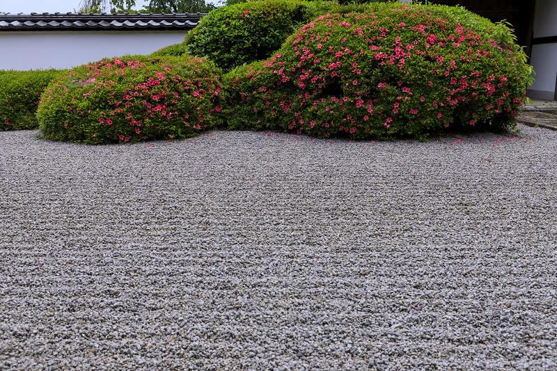 正伝寺のサツキ_f0155048_017536.jpg