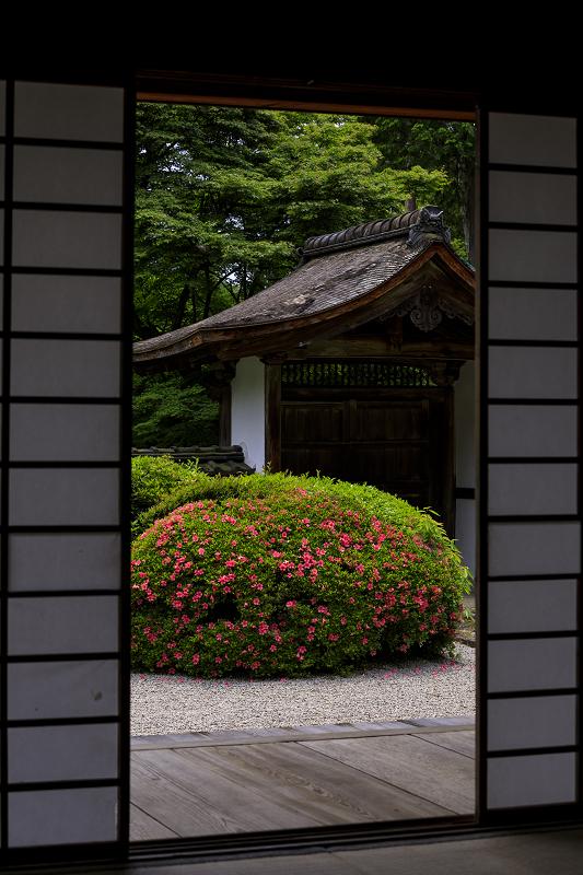 正伝寺のサツキ_f0155048_017999.jpg