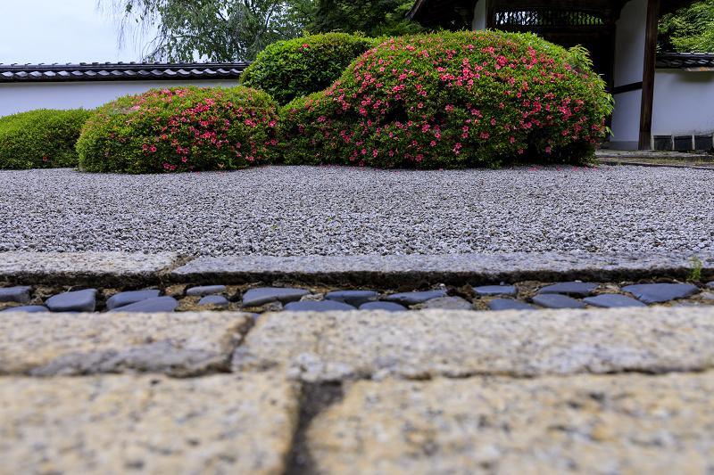 正伝寺のサツキ_f0155048_0181665.jpg