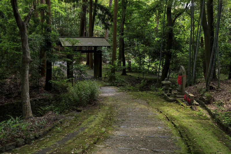 正伝寺のサツキ_f0155048_0183778.jpg