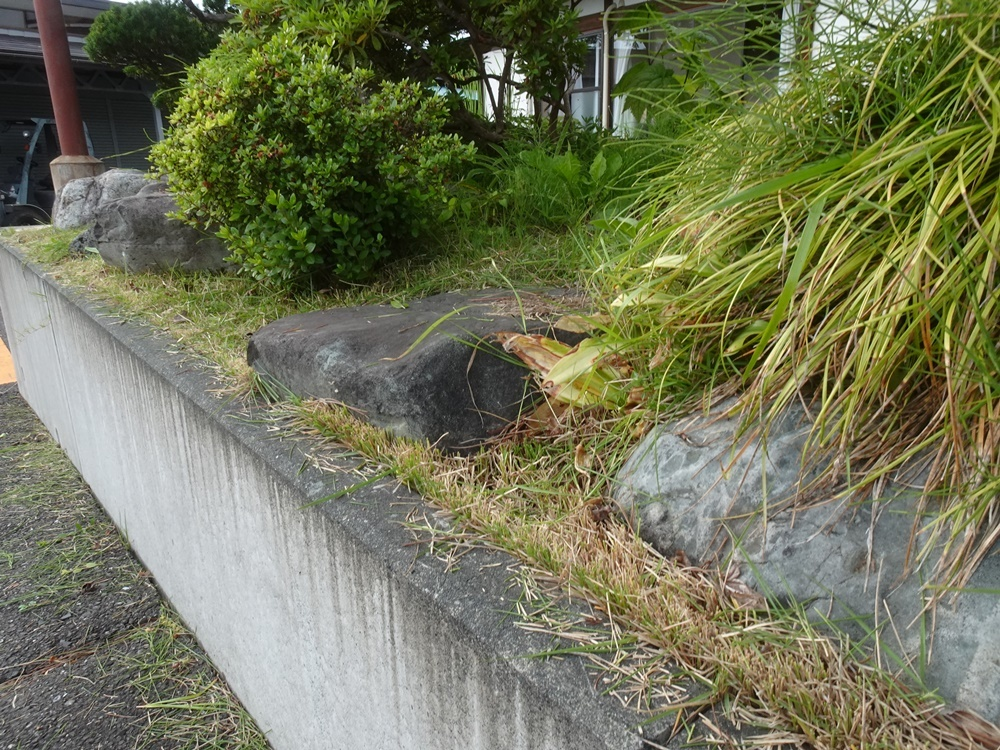 芝刈り作業_c0111229_19090627.jpg