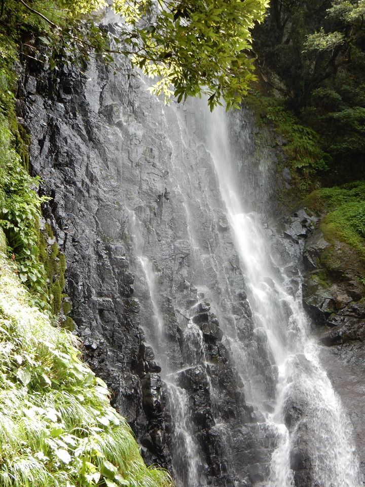 【 猿尾の滝、上の道が7年ぶりに開通 】_f0112434_17230608.jpg