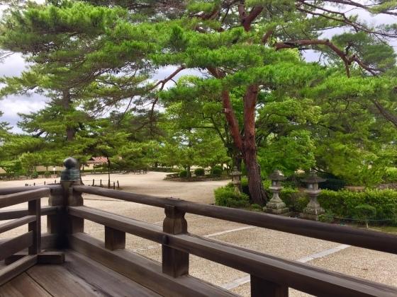法隆寺と薬師寺と柿の葉寿司_a0258686_08122135.jpeg
