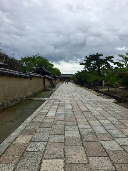 法隆寺と薬師寺と柿の葉寿司_a0258686_08125499.jpeg