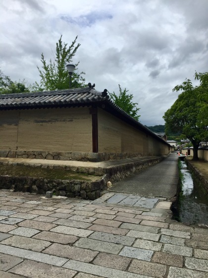 法隆寺と薬師寺と柿の葉寿司_a0258686_08132168.jpeg