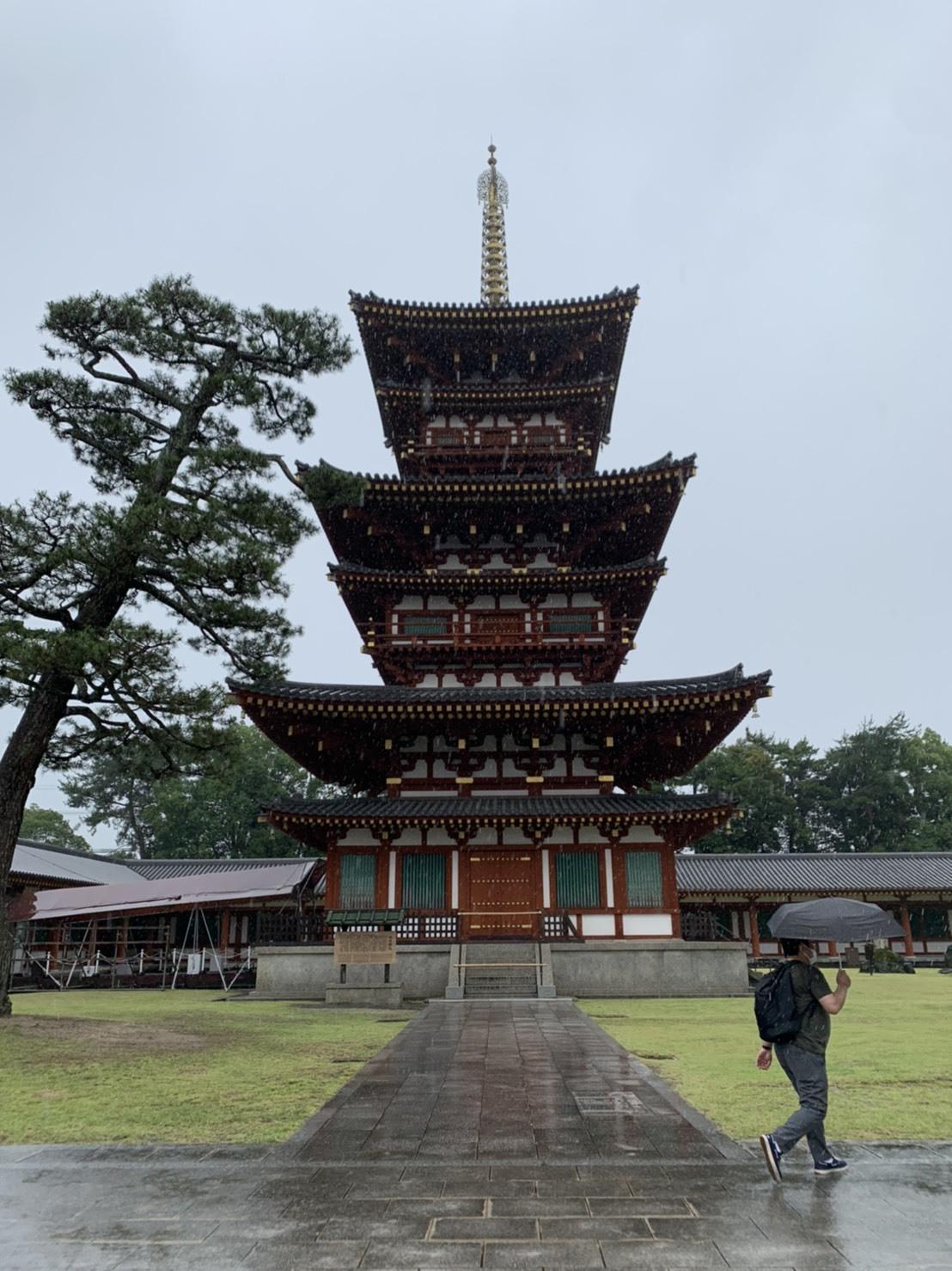 法隆寺と薬師寺と柿の葉寿司_a0258686_08230343.jpeg