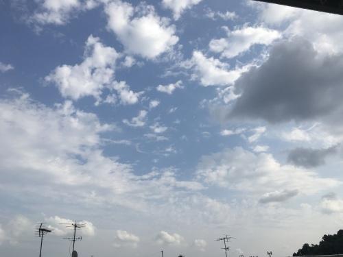 こちらは、曇り時々晴れ_f0347891_20053727.jpeg
