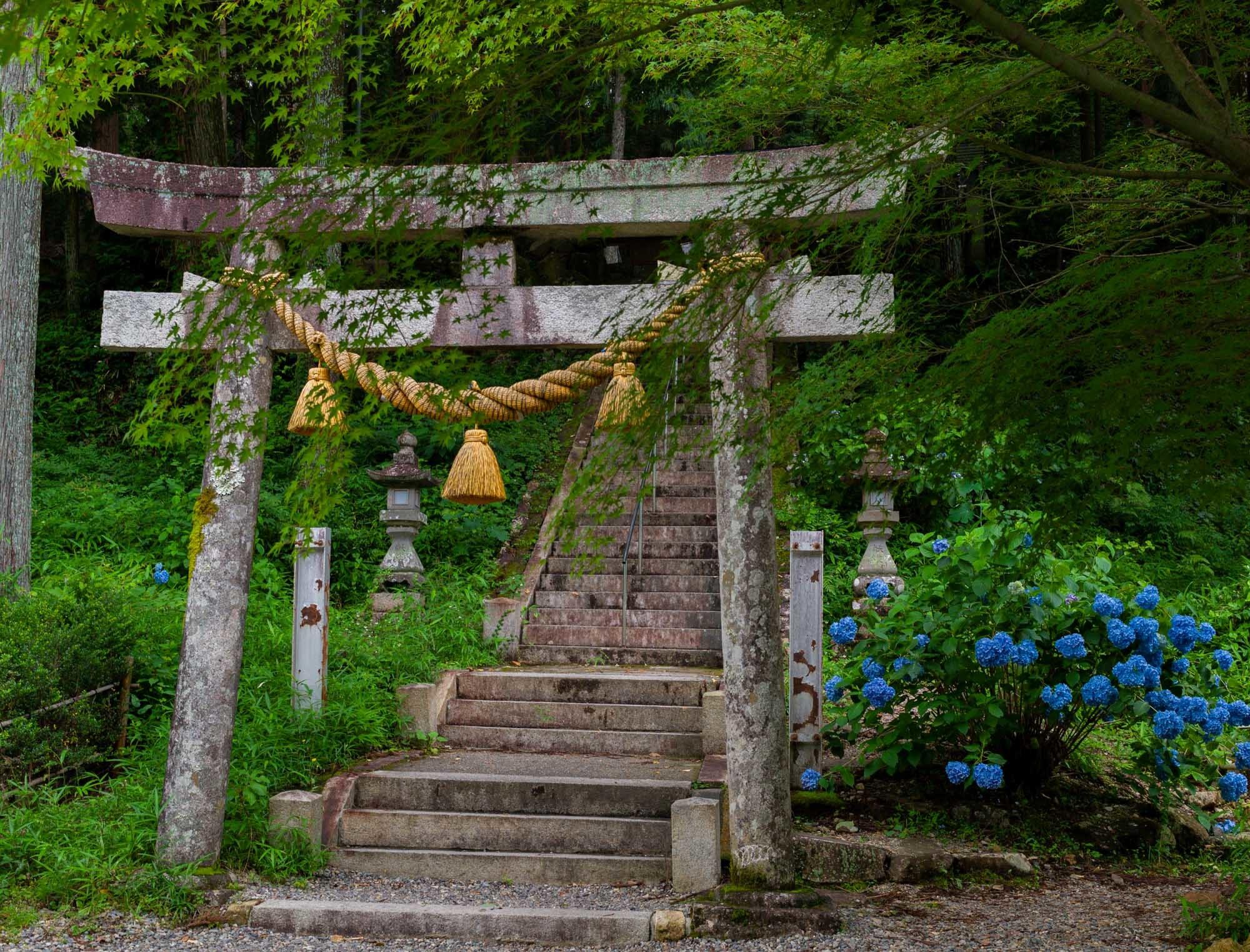 鳥居 Torii_b0126495_20204232.jpg