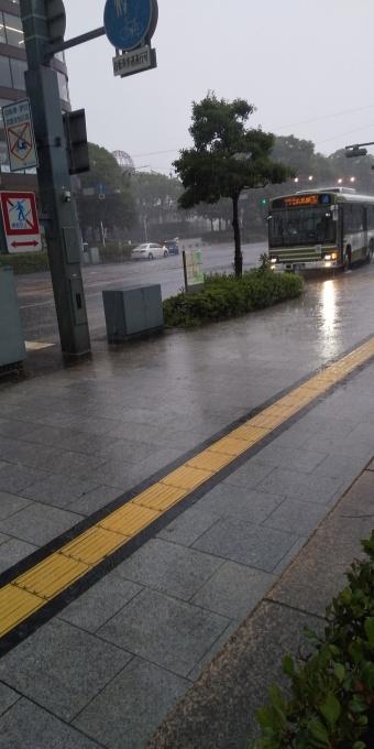 大雨の様子_e0094315_16182465.jpg