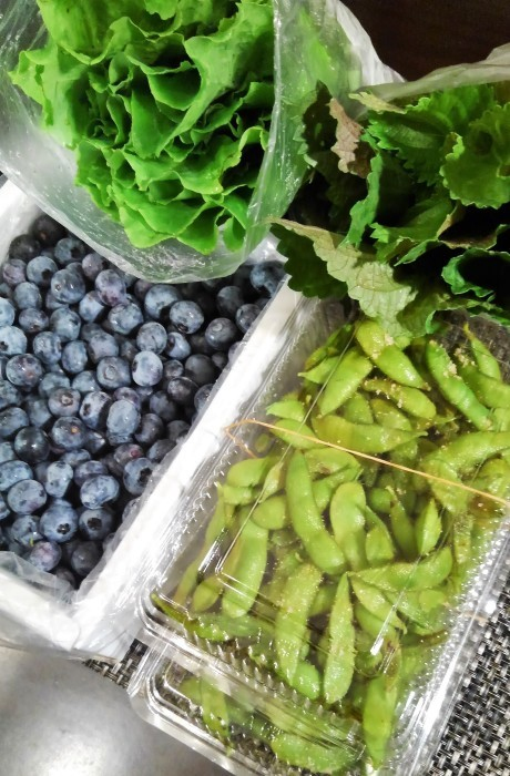 ■菜園野菜を送りました。【コロナ騒動で来れない娘夫婦に/ブルーベリー狩り】_b0033423_23550905.jpg