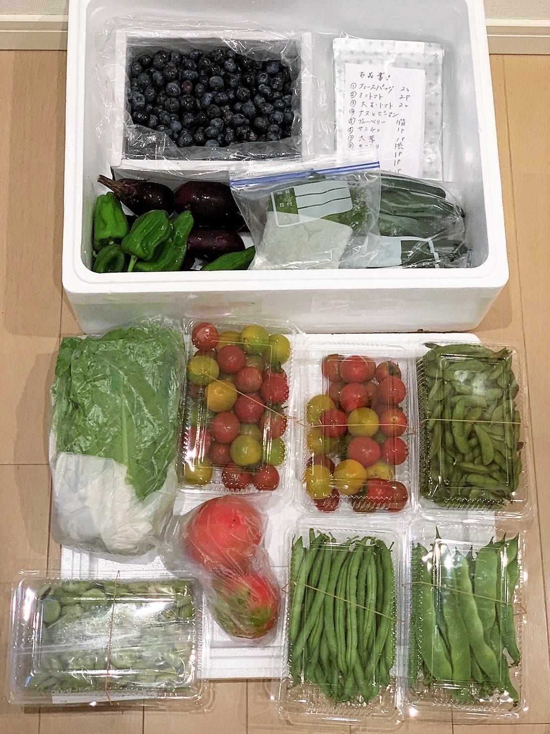 ■菜園野菜を送りました。【コロナ騒動で来れない娘夫婦に/ブルーベリー狩り】_b0033423_23553512.jpg