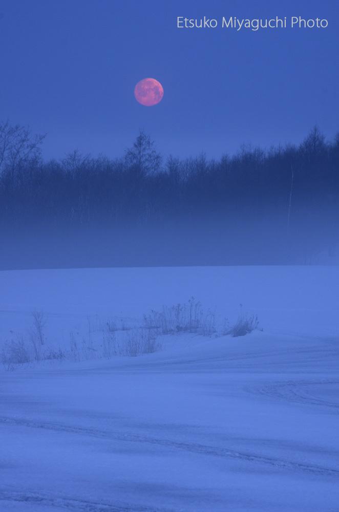 沈みゆく赤い月_f0152939_09330147.jpg