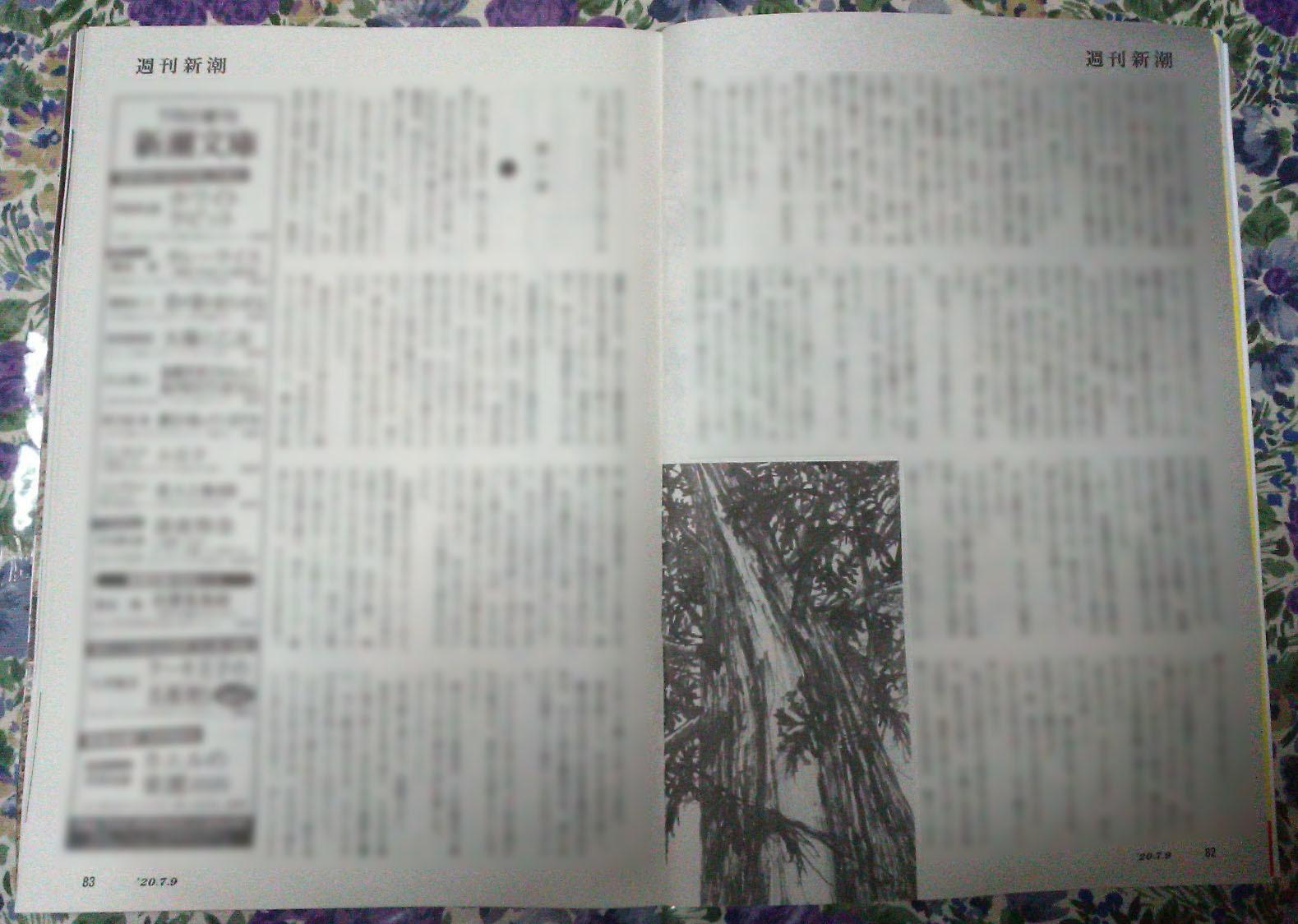 週刊新潮「雷神」挿絵 第26回_b0136144_22053811.jpg