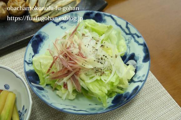昨夜の豚肉の葱レモンソース&野菜の素揚げおうちバル&ひとりごはん_c0326245_11454861.jpg