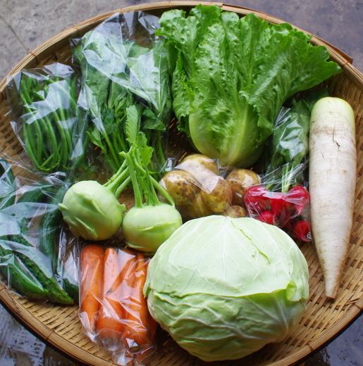 今週の野菜セット(7/7~7/11着)_c0110869_11352458.jpg
