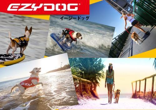 第2回 7月18、19日のカヌー試乗会の開催について_d0198793_11492783.jpg