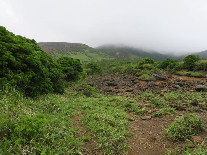 三俣山山麓を周回 2020.07.05(日)_a0166196_1454868.jpg