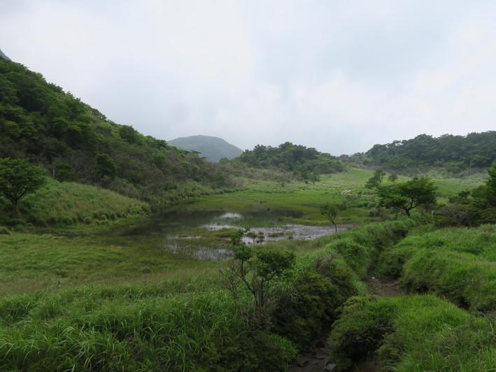 三俣山山麓を周回 2020.07.05(日)_a0166196_1495295.jpg
