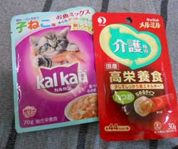 味噌の保存_e0001808_1471475.jpg