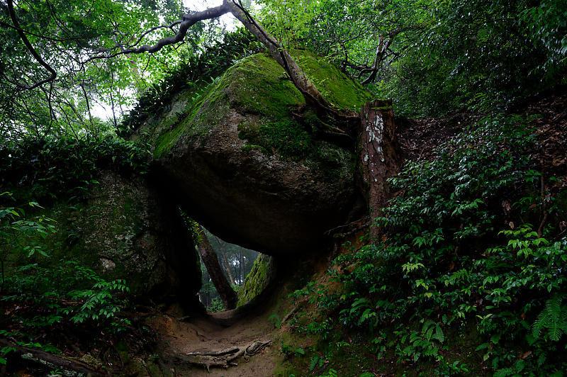 巨岩の異世界@笠置寺_f0032011_19324703.jpg