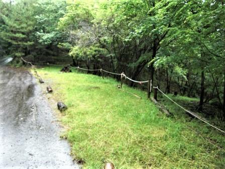 企業の森活動日記 サーラエナジー㈱ サーラの森_d0105723_18505248.jpg