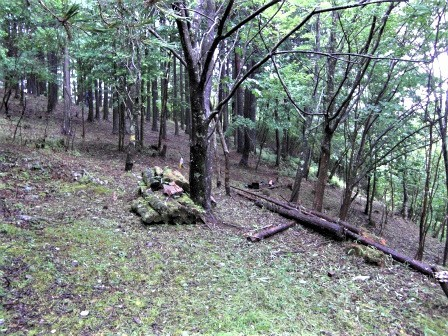 企業の森活動日記 サーラエナジー㈱ サーラの森_d0105723_18515190.jpg
