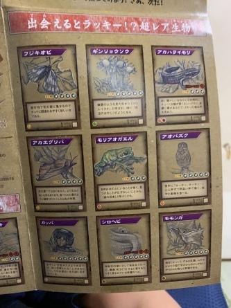 若桜冒険遊び大図鑑!完成!!_f0101226_19591801.jpeg