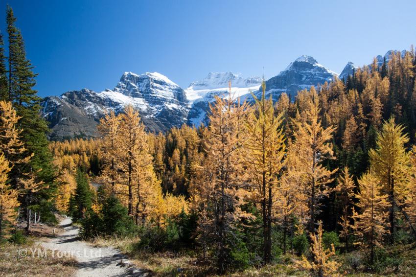 シーズンを通して楽しめる3つのベスト・ハイキングコース_d0112928_06424021.jpg