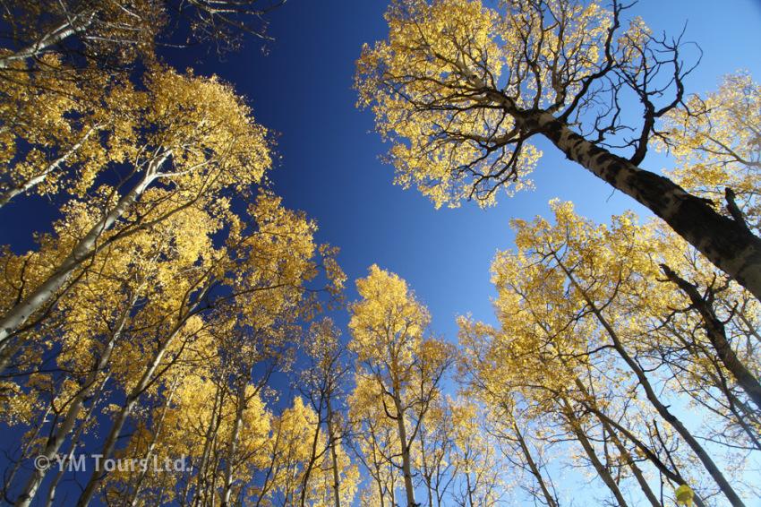 シーズンを通して楽しめる3つのベスト・ハイキングコース_d0112928_06514426.jpg