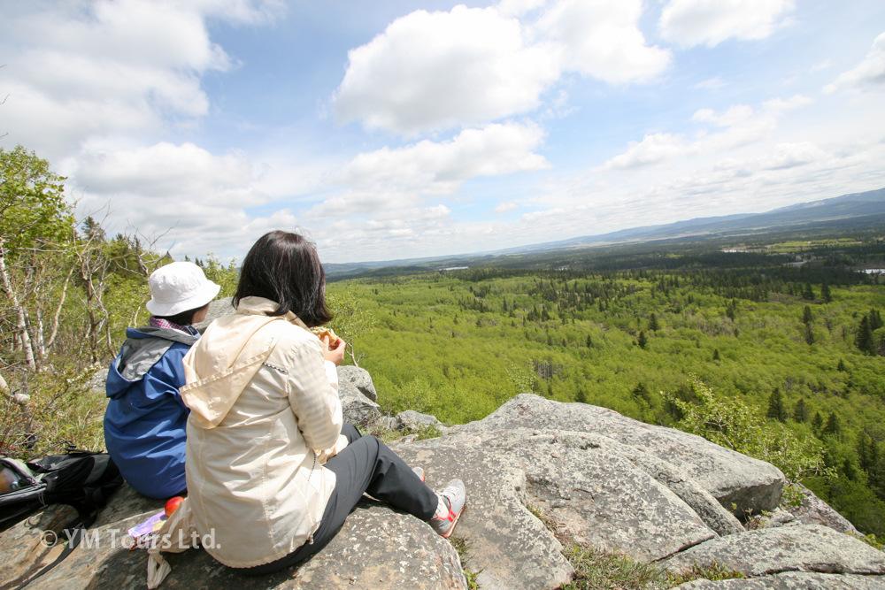 シーズンを通して楽しめる3つのベスト・ハイキングコース_d0112928_07031261.jpg